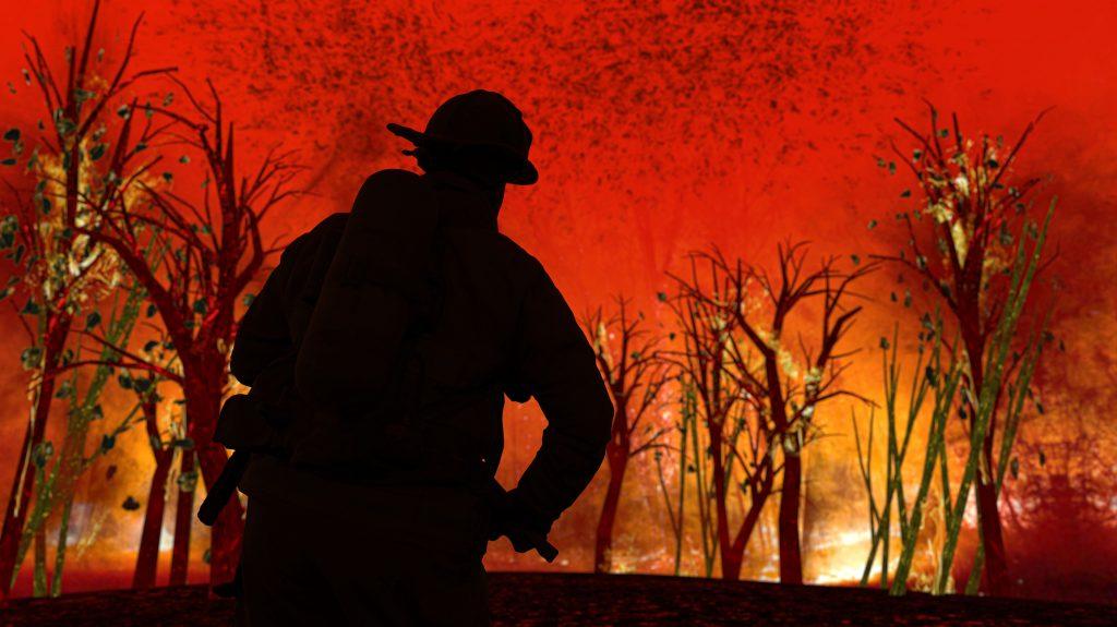 Por un verano sin grandes incendios forestales